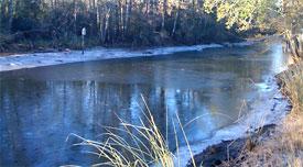 frozen creek in Mobile